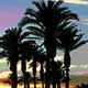 CA Palm Desert Sunset-2